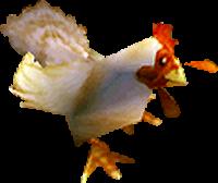 galinha-wow